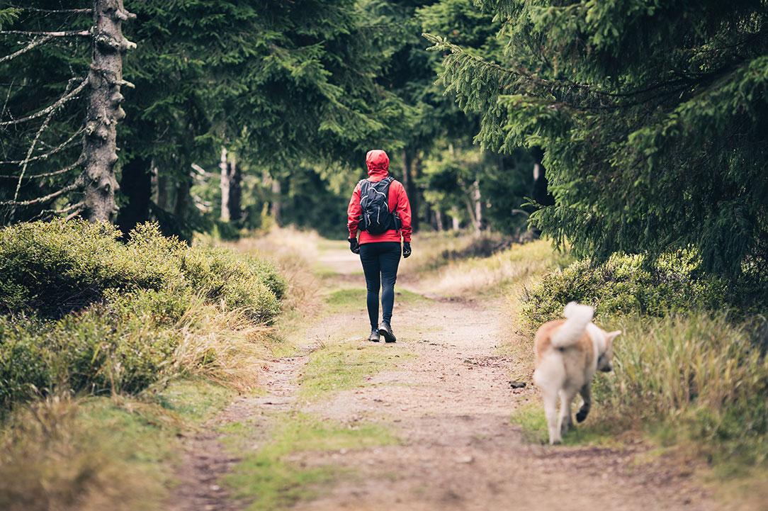 Wandern & Radeln